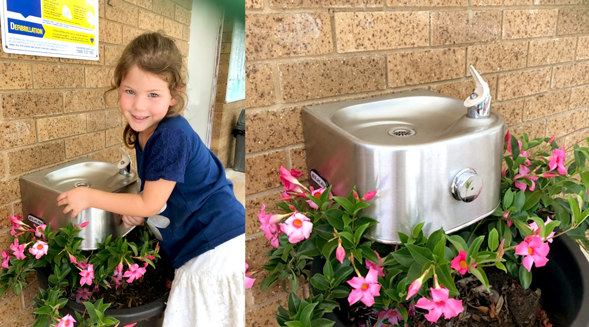 Family Link Centre Softsides Single Drinking Fountain