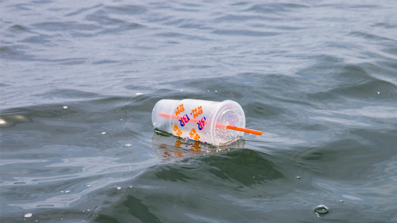 plastic bottle waste or Single-use plastic is now banned